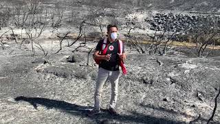 Woolsey Fire: Scenes From American Red Cross Response to Wildfires in Malibu, California 20181112