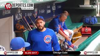 Chicago Cubs #NLDS Workout at Wrigley Field