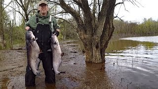 Catfishing in flood. How to catch catfish in high water - Finding and locating catfish in river.