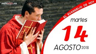 Evangelio de hoy martes 14 de agosto de 2018