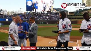 Jason Hammel, Travis Wood and Jorge Soler receive World Series Rings