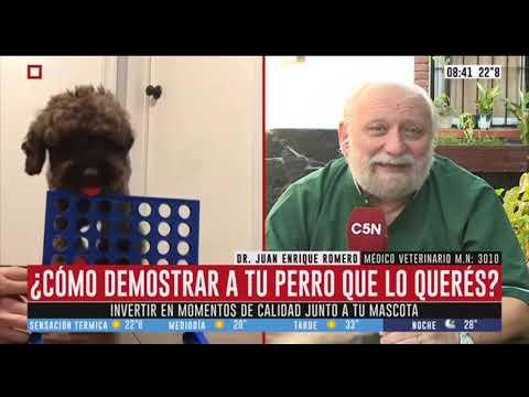 El consultorio del Dr. Romero - 15/2/2020