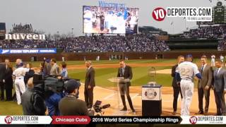 Chicago Cubs World Series Championship Ring Ceremony