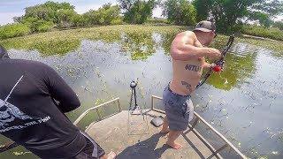 Bowfishing Carp in a CLEAR LAKE!!
