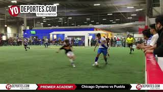 Chicago Dynamo vs. Puebla Premier Academy Soccer League