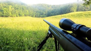 Summertime Coyote Hunting