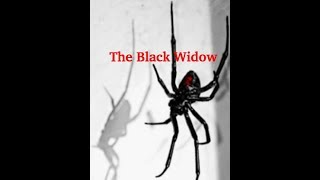[Taehyung FF 21+] The Black Widow | Episode 22
