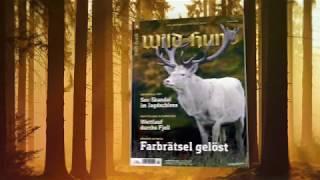 Heftvorschau WILD UND HUND-Ausgabe 4/18