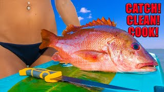 Dog Snapper (Catch Clean Cook) Grilled with BANANA Leaf! Gourmet Recipe!