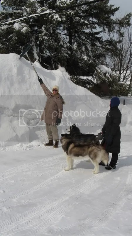 Ottawa Winter 08
