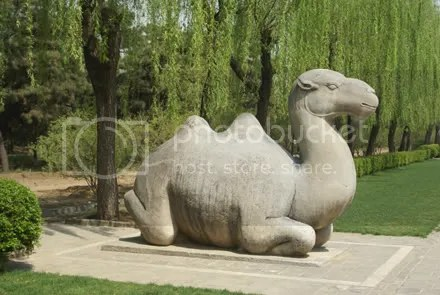 China Sacred Way Camel