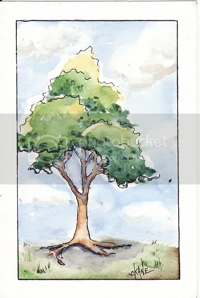 cloud & tree sketch - watercolor