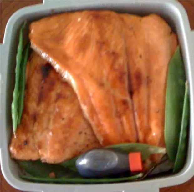Steelhead Trout Bento