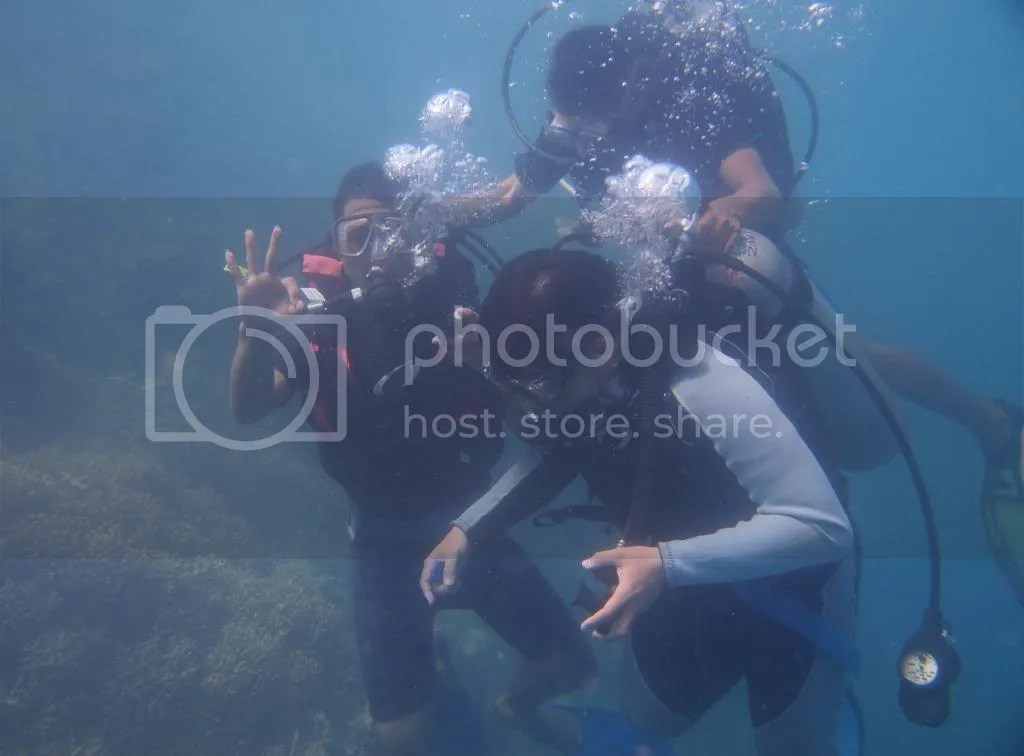 Me Learn To Dive