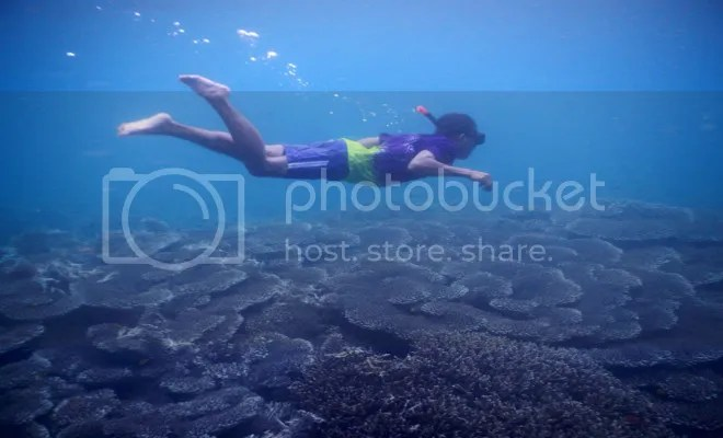 snorkeling gili di lombok gili petagan