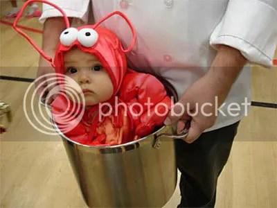 https://i2.wp.com/i306.photobucket.com/albums/nn277/LuS172/funny-baby-costume.jpg