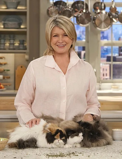 Martha Stewart and her Dominic Calico Persian Cat s Empress Tang and Princess Peony