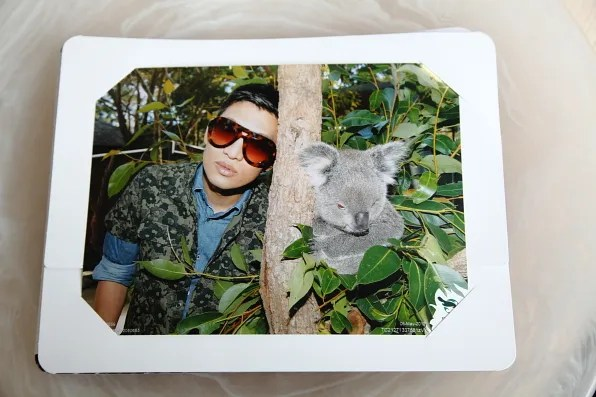 Koala Encounter at Taronga Zoo, Sydney