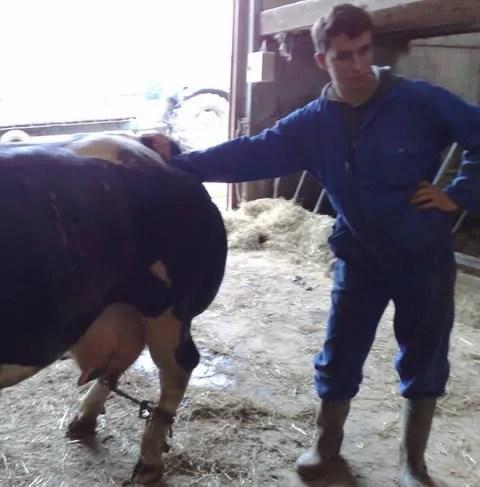 Belgian Farmer