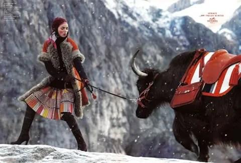 Mariacarla Boscono, Hermes Fall 2008 ad campaign