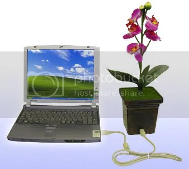 Think green, think flower pot usb!