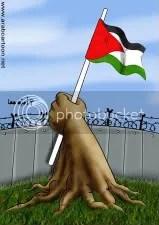 by Umayah Jiha