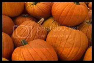 Fall Pictures, Images and Photos