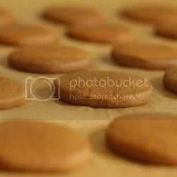 ginger cookie by sopherelli Pictures, Images and Photos