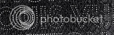 Louis Vuitton Python Perfore