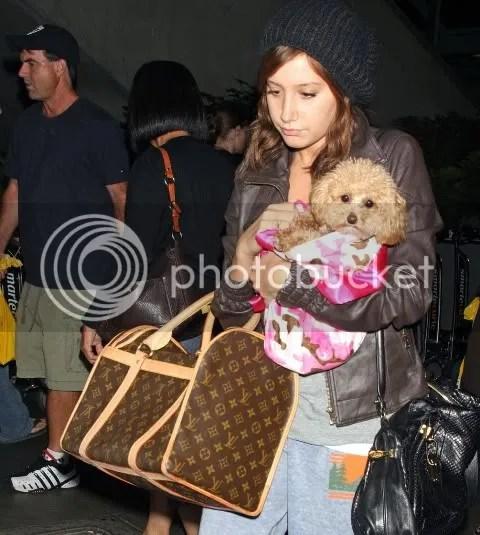 Ashley Tisdale's Louis Vuitton Sac Chien