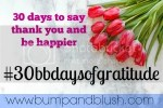 #30bbdaysofgratitude challenge thank you