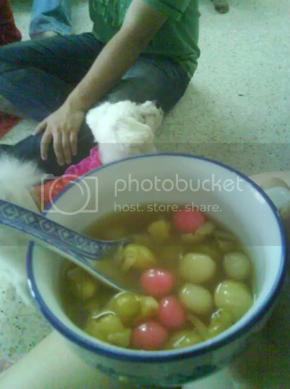 Soft, chewy coloured rice balls in sweet ginger soup. Yum!