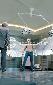 Con esas alas podria ganar mucho dinero en el Vaticano.