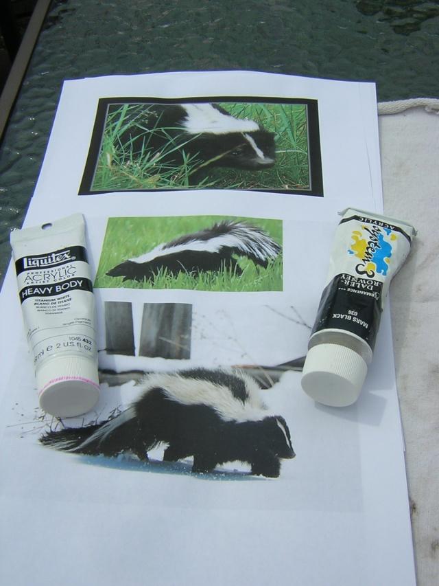 Peindre une mouffette sur une roche feutrine et crinoline for Peindre sur du badigeon