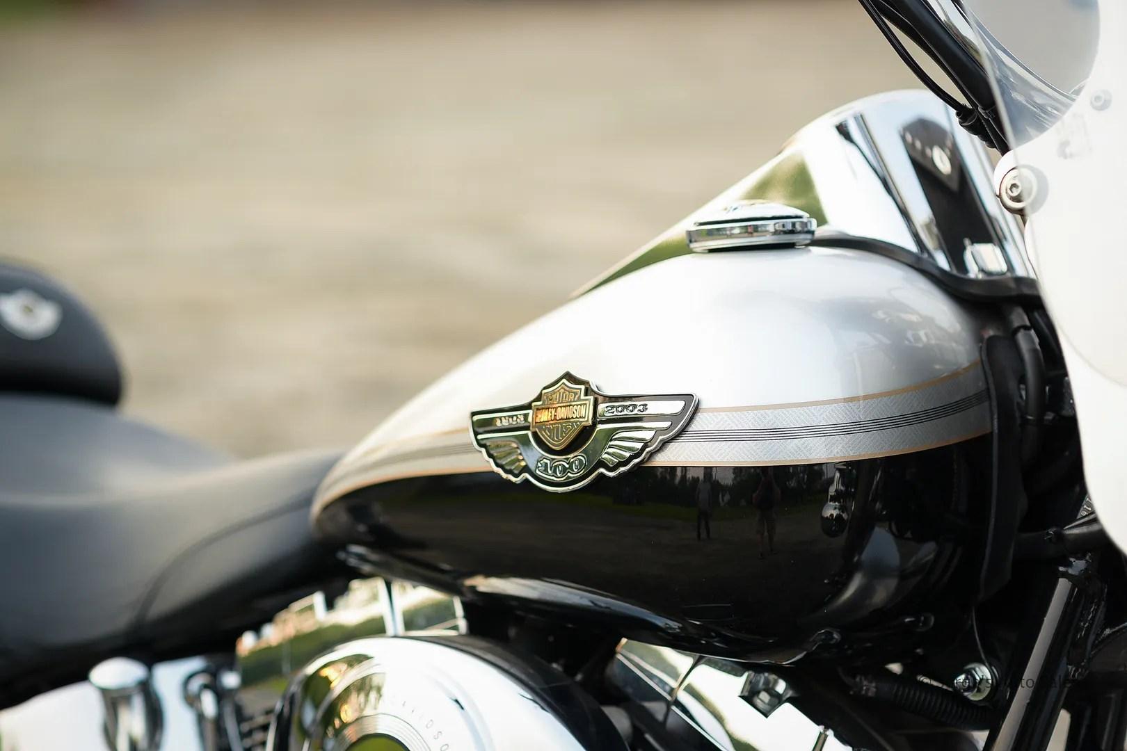 photo Harley-15_zpswxkjl8ee.jpg