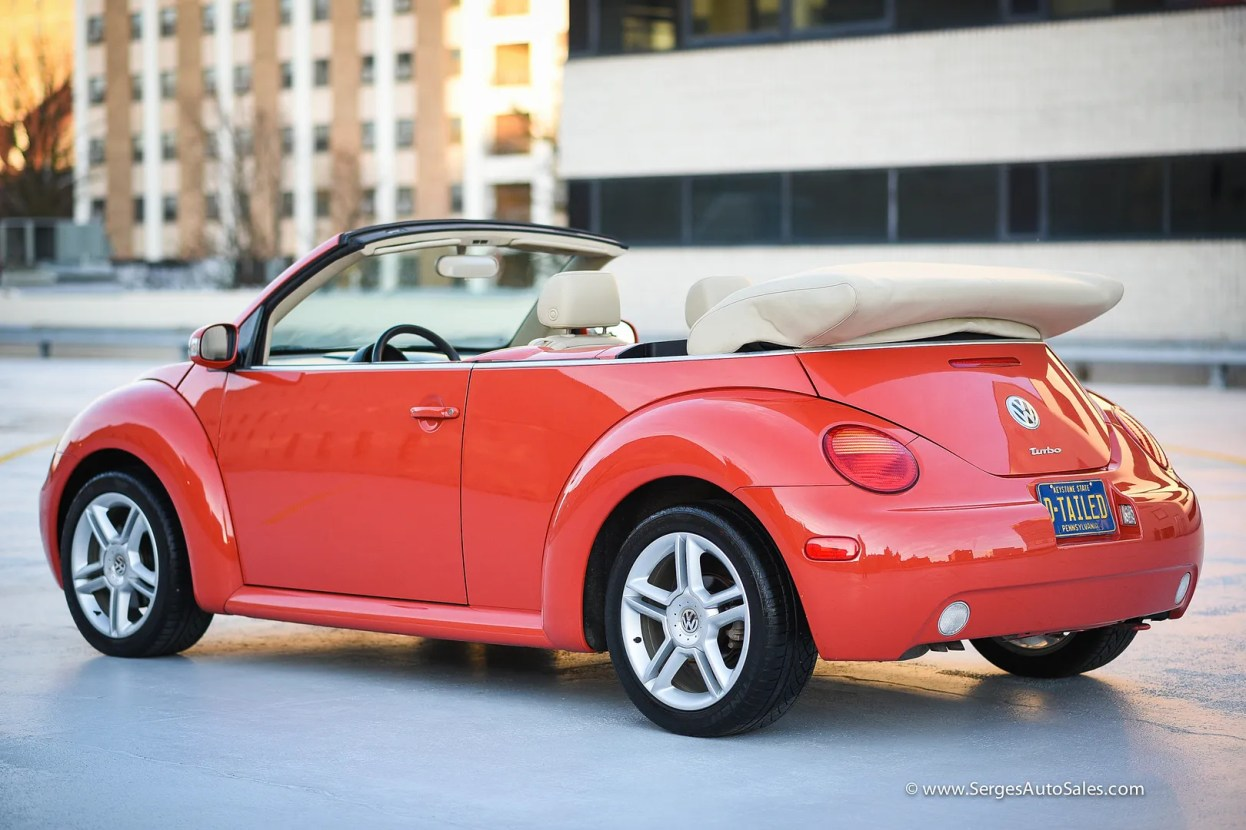 photo beetle-28_zps6svieroh.jpg