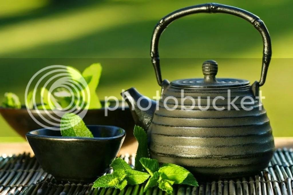 Diet Sehat Dengan Teh Hijau