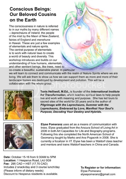Upcoming workshop on elemental beings in the Thornhill area