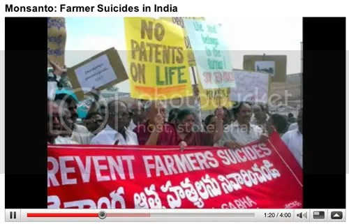 Suicides of Indian farmers after Monsanto crop failures in the news again.