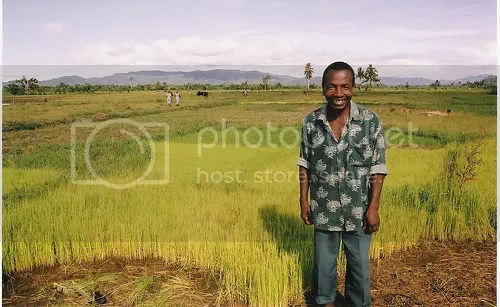 Rice farmer on a rice paddy in Africa. Picture from ecoworldly.com
