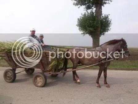 Romanian farmers version of a pickup truck.