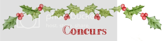 photo christmas1-concurs3_zpstthl5luy.png