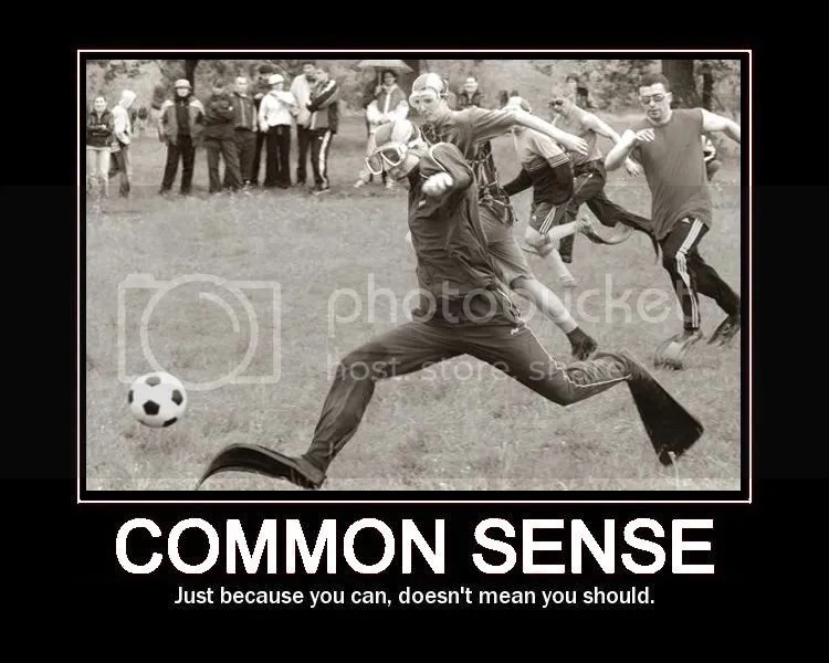 CommonSense.jpg common sense image by XeroX19