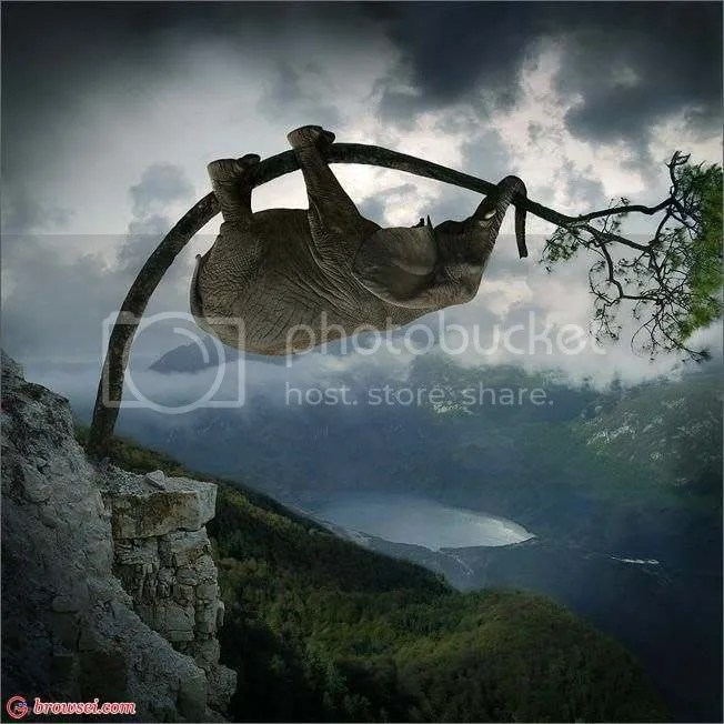 elephant-s-adventure-trees-elephant.jpg elephant-s-adventure-trees-elephants-photoshop
