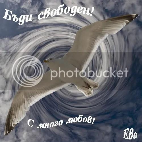 https://i2.wp.com/i371.photobucket.com/albums/oo160/lubov_lux/lubov/2640406432_32087dca64.jpg