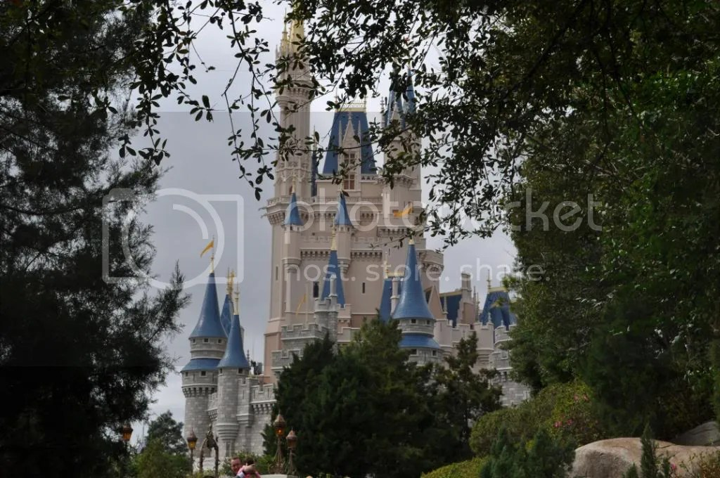 Castle through the trees