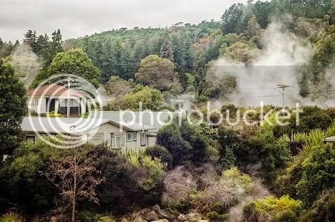 NZ photo _DSC0060_zps83e3e515.jpg