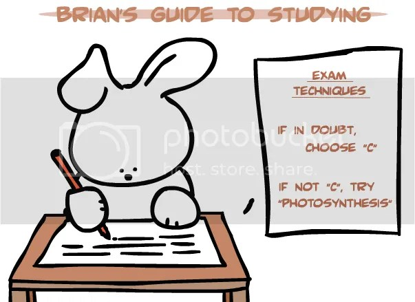 Study Cartoon Pictures, Images and Photos