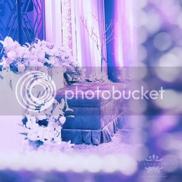 photo 11242134_857221847684434_1575692177_n.jpg