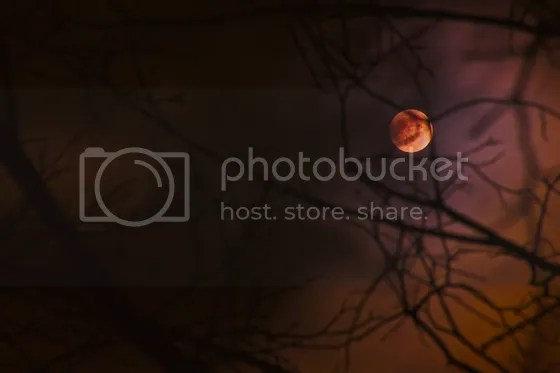 photo bmoon01.jpg